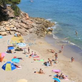 Playa dels Vienesos